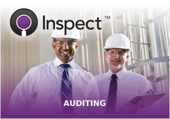 Inspect - Auditing